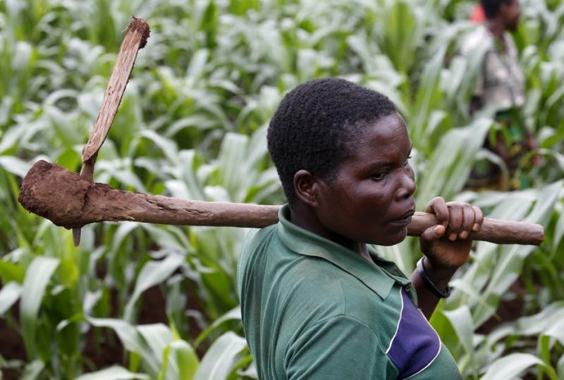 How Young Entrepreneurs are helping to Boost Black African Farmers