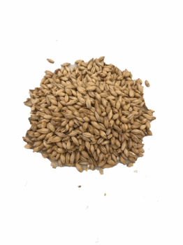 British Pale Malt