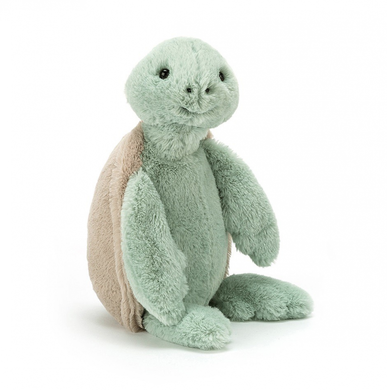Bashful Turtle - Medium