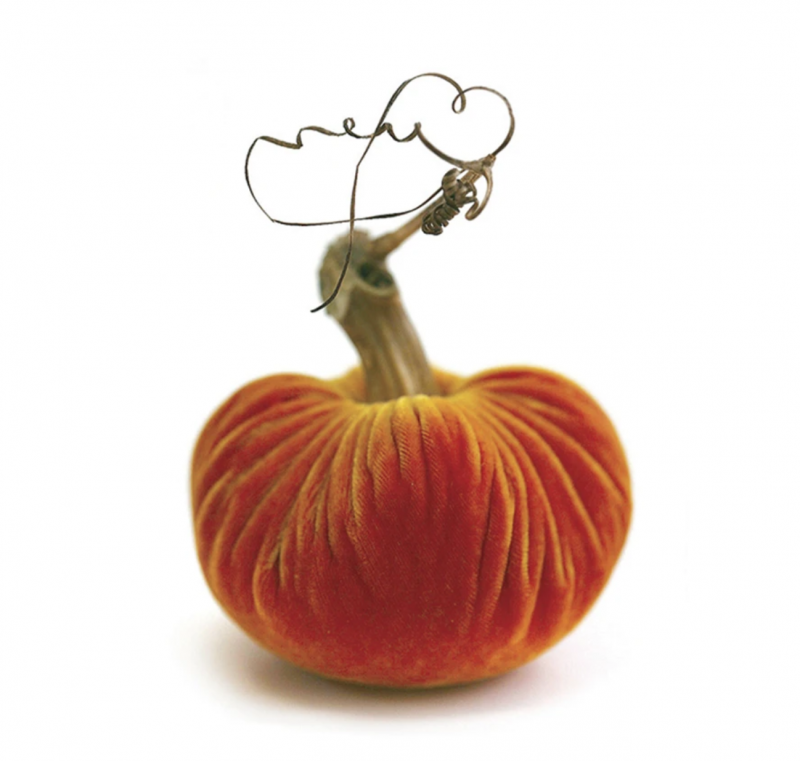 Velvet Plush Pumpkin - Carrot