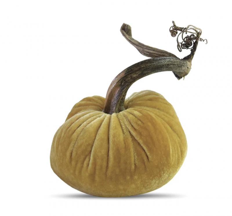 Velvet Plush Pumpkin - Butter