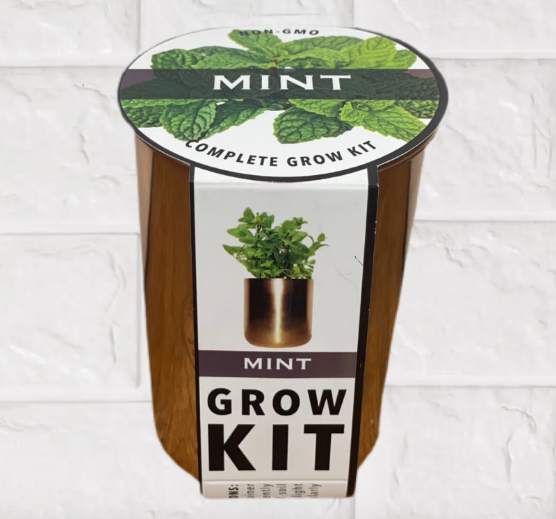 Mint Grow Kit