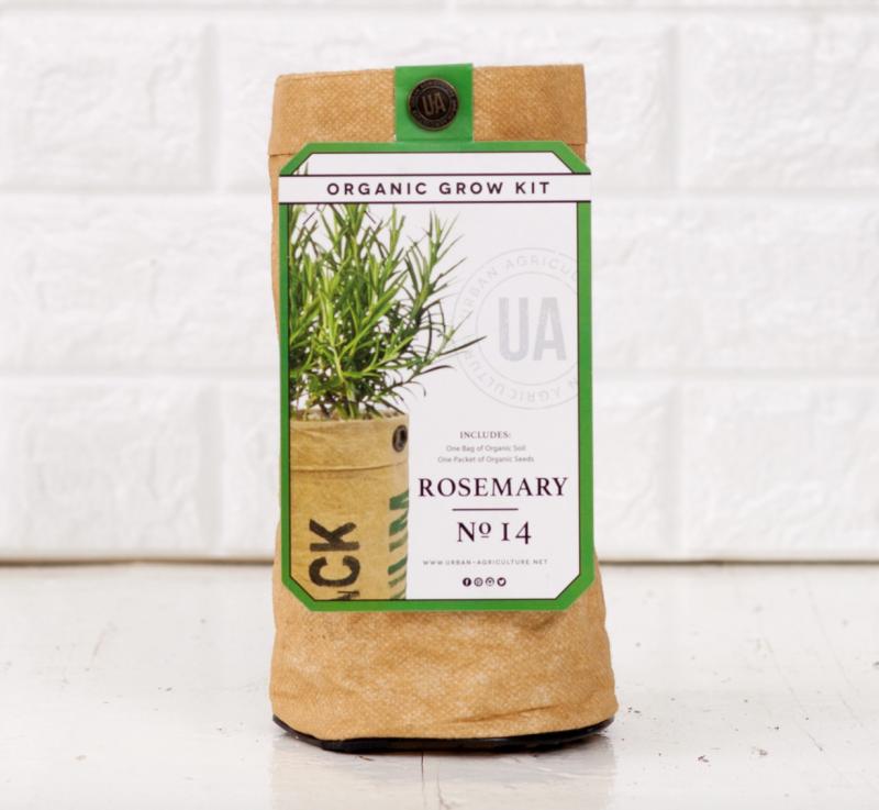 Rosemary Grow Kit