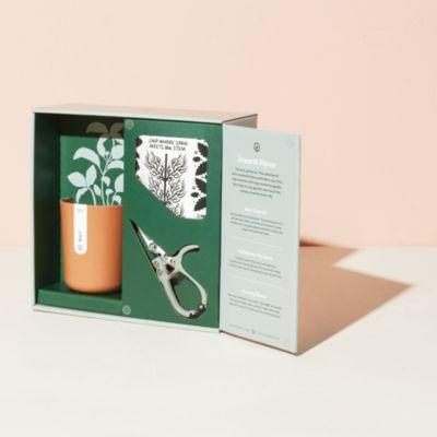 Modern Sprout Harvest Gift Set