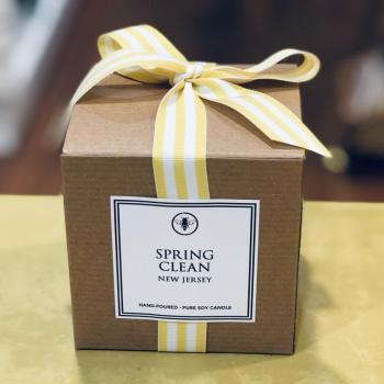Spring Clean Soy Candle (Lemon Zest & Vanilla)