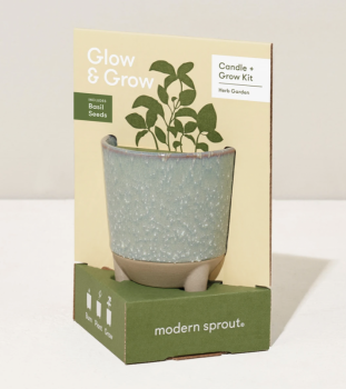 Glow and Grow Kit - with Basil Seeds