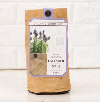 Lavender Grow Kit