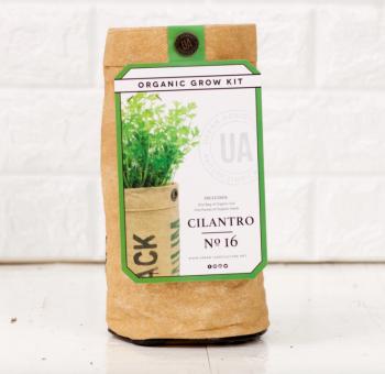 Cilantro Grow Kit