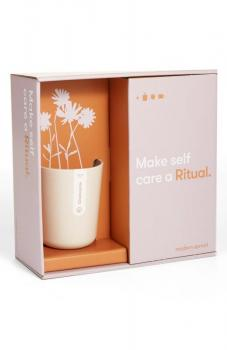 Modern Sprout Ritual Tea Gift Set