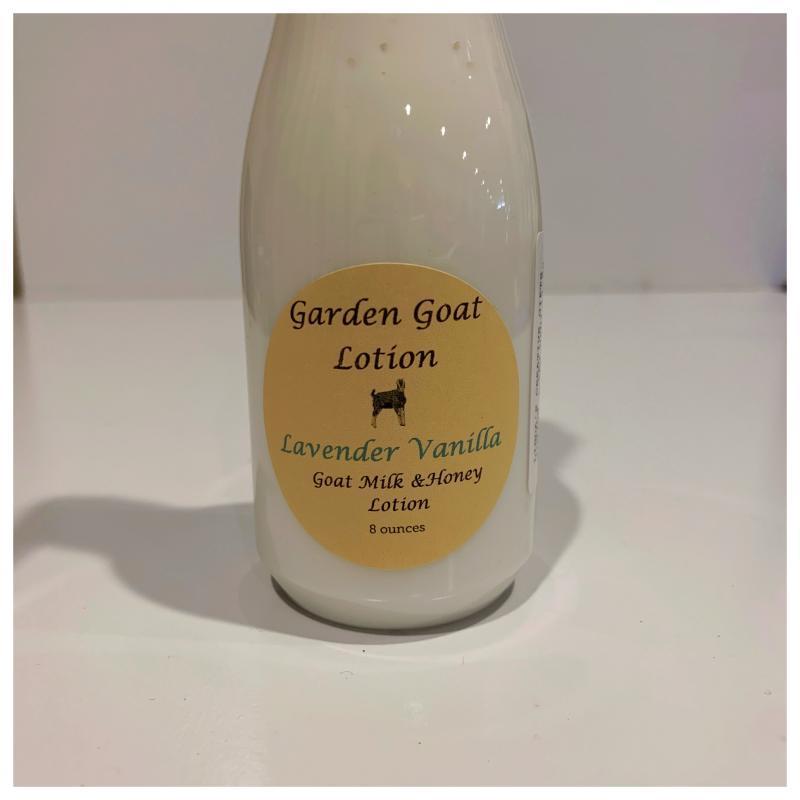 Goat Milk Lotion-Lavender Vanilla