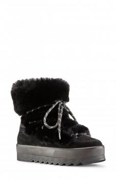 Women's Vanity Polar Plush & Faux Fur Suede Booties