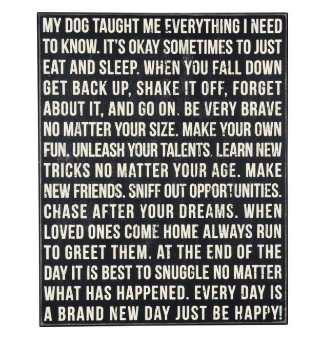 Dog Taught Me Everything Sign