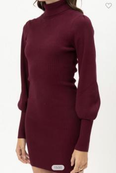 Turtle Sweater Dress
