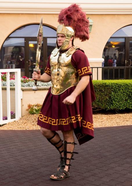 Trojans On The Paddock