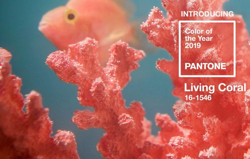 pantone-color-of-the-year-2019-living-coral-e1545376994299